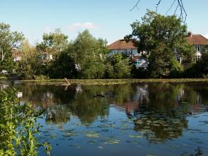 Browne's Pond