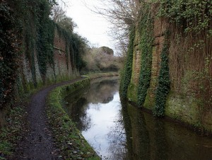 The canal cutting near West street
