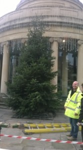 Workers put up the Christmas tree on Bridgwater's Cornhill