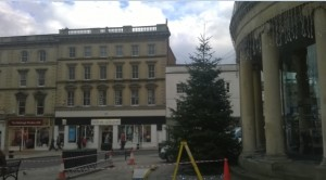 Bridgwater's town centre Christmas tree 'back by popular demand'