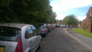 Anson way -traffic needs sorting, trees need keeping