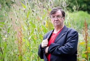 smed reeds