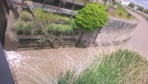 Can we get the river navigable once more?